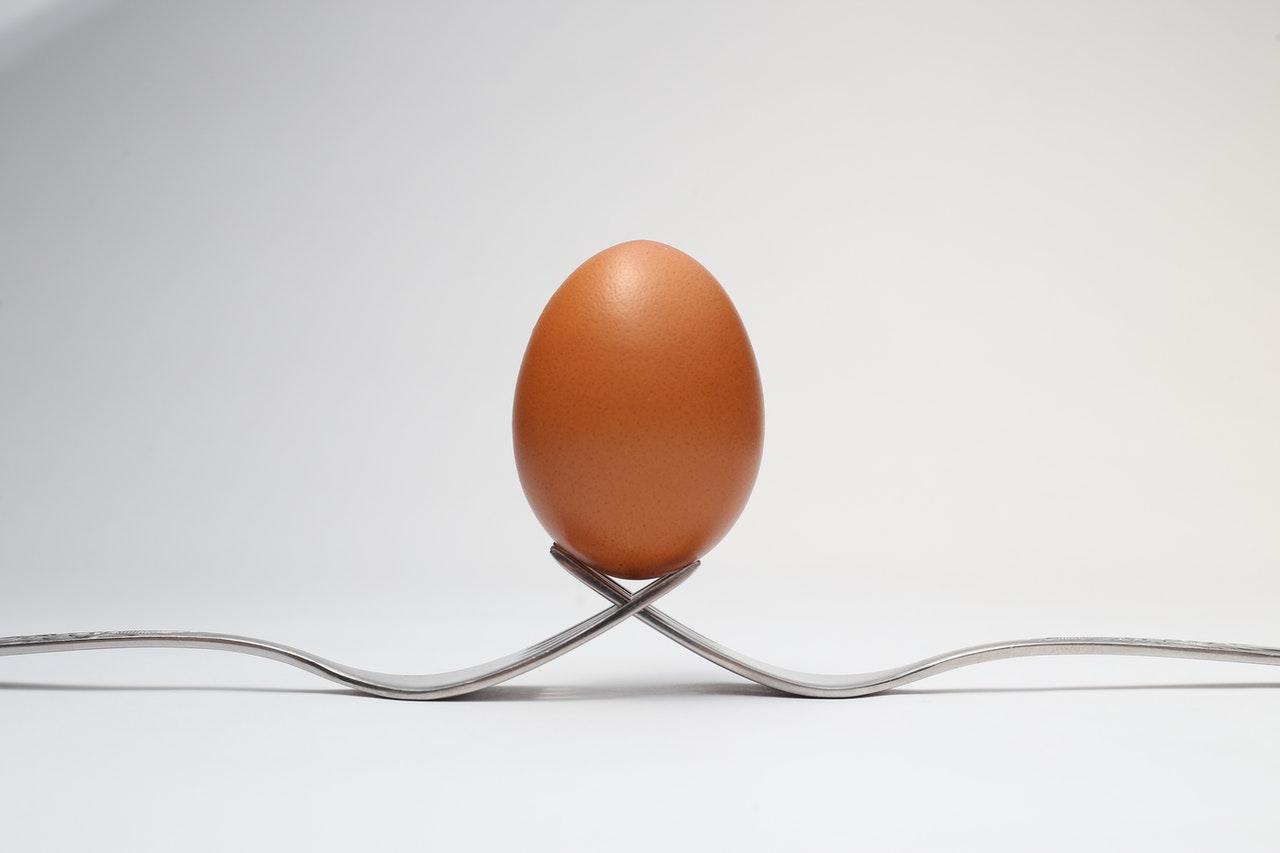 Oder ist gekocht oder das Eigelb selbst besser?