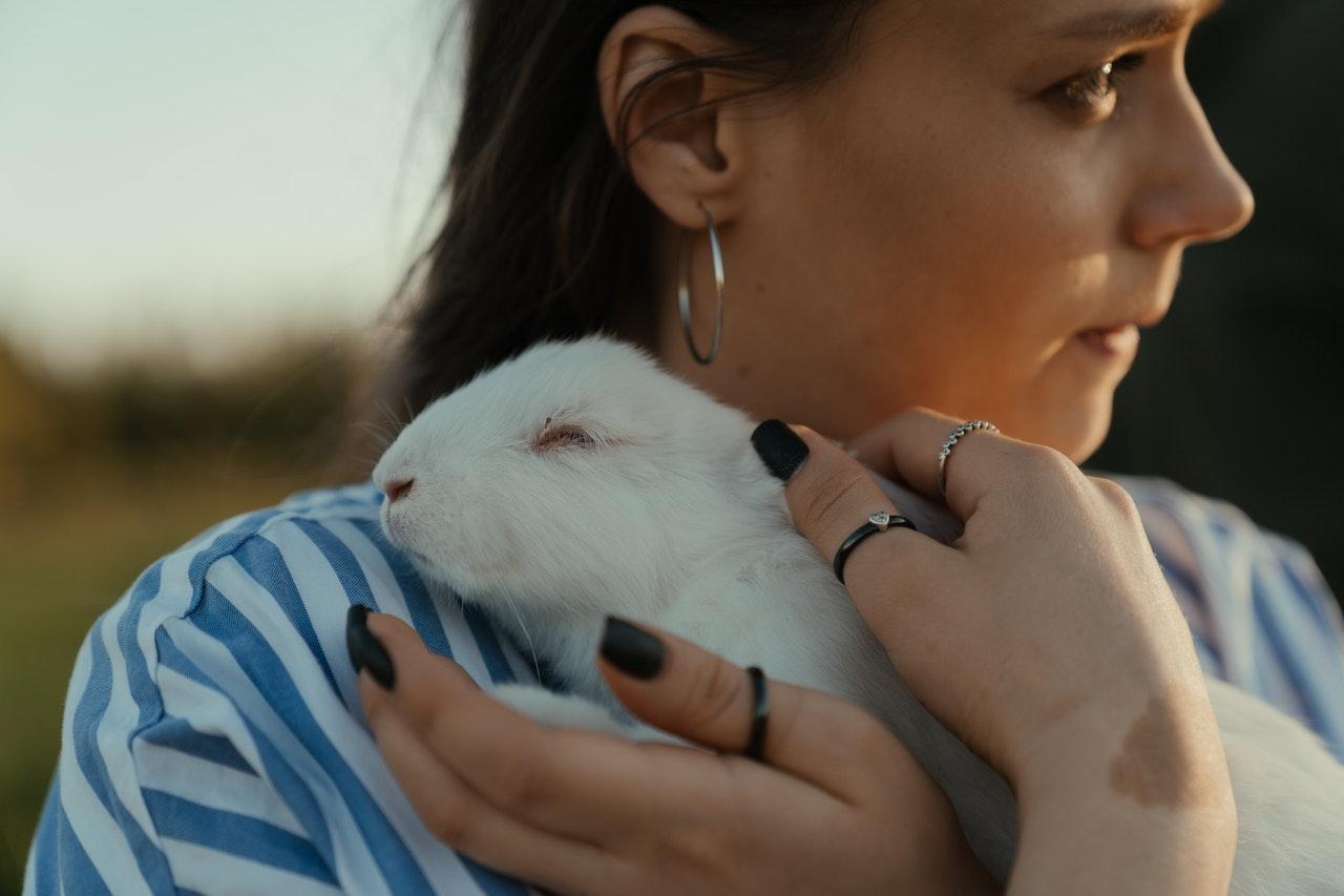 Wie können wir wissen, dass unser Kaninchen glücklich ist und uns mag?