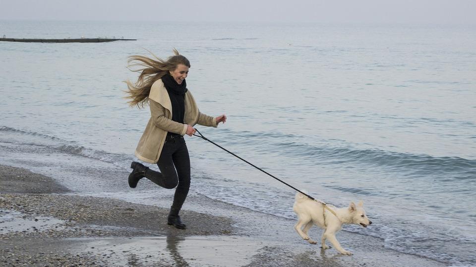 Laufen mit einem Hund macht großen Spaß - auch im Winter.