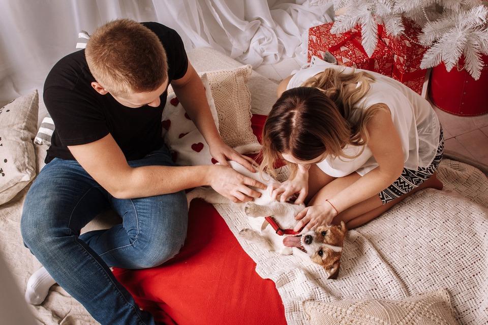 Viele fische dating app christian