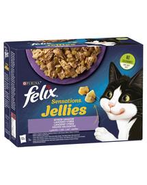Felix Sensations Gelees Fleisch und Fisch mit Gemüse 72x85g