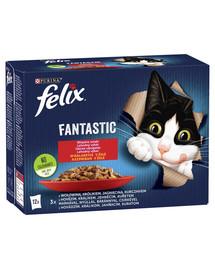 FELIX Fantastic So gut wie es ausssieht mit Rind, Kaninchen, Lamm, Huhn 72x85g