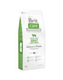 BRIT Care Dog Grain-Free Adult Large Breed Salmon&Potato 1kg