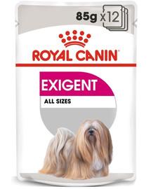 ROYAL CANIN Exigent Alleinfuttermittel für Hunde 85 g x 12