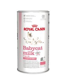 ROYAL CANIN BABYCAT MILK Aufzuchtmilch für Kitten 300 g