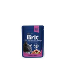 BRIT Premium Cat Pouches with Salmon & Trout 100g