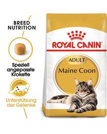 ROYAL CANIN Maine Coon Adult Katzenfutter trocken 2 kg