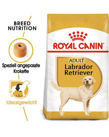 ROYAL CANIN Labrador Retriever Adult Hundefutter trocken 12 kg
