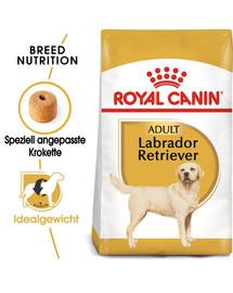 ROYAL CANIN Labrador Retriever Adult Hundefutter trocken 12 kg