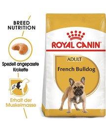 ROYAL CANIN French Bulldog Adult Hundefutter trocken für Französische Bulldoggen 9 kg