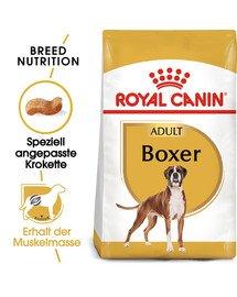 ROYAL CANIN Boxer Adult Hundefutter trocken 12 kg