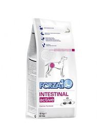 FORZA 10 Intestinal Active Trockenfutter für Hunden mit Magenschleimhautentzündung 4 kg