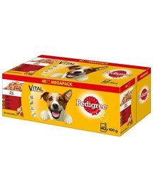 PEDIGREE Multipack Adult in Gelee 40x100g