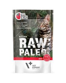 VETEXPERT Katzen-Nassfutter Raw Paleo Kitten Rind 100G