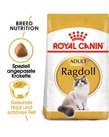 ROYAL CANIN Ragdoll Adult Katzenfutter trocken 10 kg