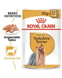 ROYAL CANIN Yorkshire Terrier Adult Hundefutter nass Mousse 12 x 85 g