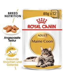 ROYAL CANIN Maine Coon Adult Katzenfutter nass 85 g