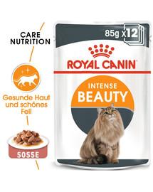ROYAL CANIN Intense Beauty Katzenfutter nass in Soße für schönes Fell 12x85g