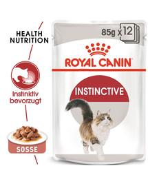 ROYAL CANIN INSTINCTIVE Katzenfutter nass in Soße 12 x 85 g