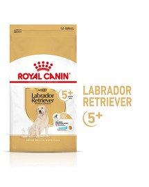 ROYAL CANIN Labrador Retriever Adult 5+ Trockenfutter für Hunde ab 5 Jahren 12kg