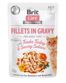 BRIT Care Cat Pouch TENDER TURKEY & SAVORY SALMON 85g