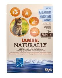 IAMS Naturally mit Hering aus dem Atlantik in Sauce 85 g