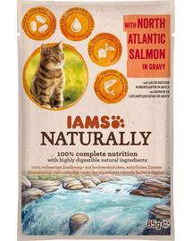 IAMS Naturally erwachsene Katze mit Lachs aus dem Nordatlantik in Sauce 85 g