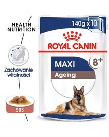 ROYAL CANIN MAXI Ageing 8+ Nassfutter für ältere große Hunde 10 x 140 g