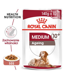 ROYAL CANIN MEDIUM AGEING 10+ Nassfutter für ältere mittelgroße Hunde 10 x 140 g