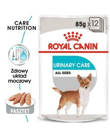 ROYAL CANIN Urinary Care Nassfutter für Hunde mit empfindlichen Harnwegen Mousse 85 g x 12