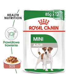 ROYAL CANIN Mini adult 12x85 g