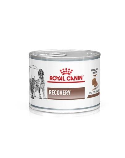 ROYAL CANIN Vet dog cat recovery 195 g Diät-Alleinfuttermittel für ausgewachsene Hunde und ausgewachsene Katzen