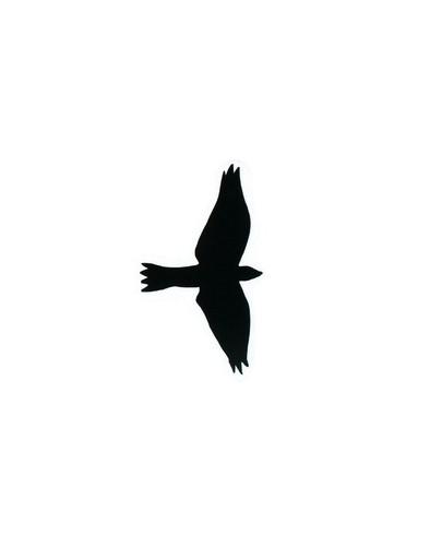 TRIXIE Greifvogelsilhouetten 3 St