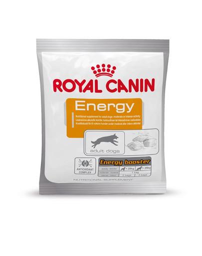 ROYAL CANIN ENERGY Hundeleckerli mit konzentrierter Energie 50 g
