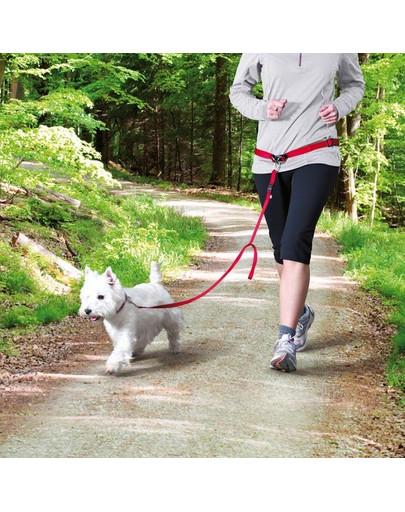TRIXIE Bauchgurt mit Leine für kleine und mittelgroße Hunde S-M