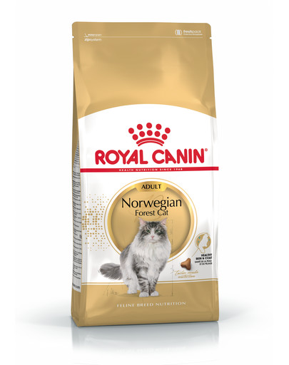 ROYAL CANIN Norwegian Forest Cat Adult Trockenfutter für Norwegische Waldkatzen 400 g 9982
