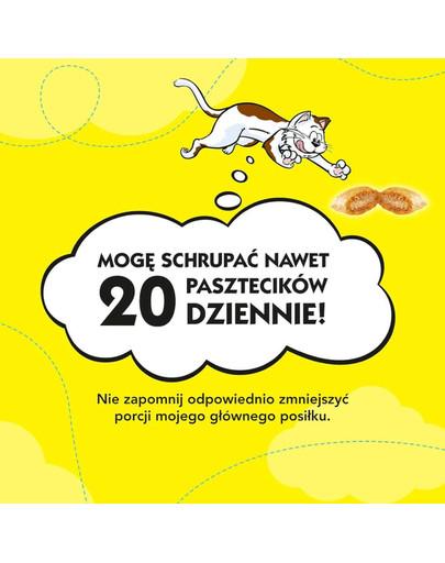 DREAMIES Dreamies Klassiker mit Käse 4 x 180g MEGA PACK