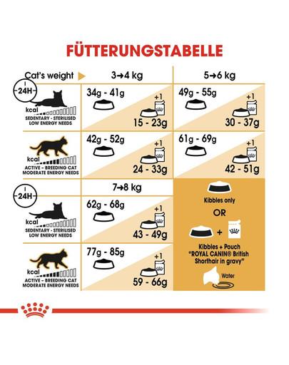 ROYAL CANIN British Shorthair Katzenfutter trocken für Britisch Kurzhaar 4 kg