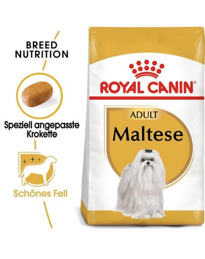 ROYAL CANIN Maltese Adult Hundefutter trocken 500 g