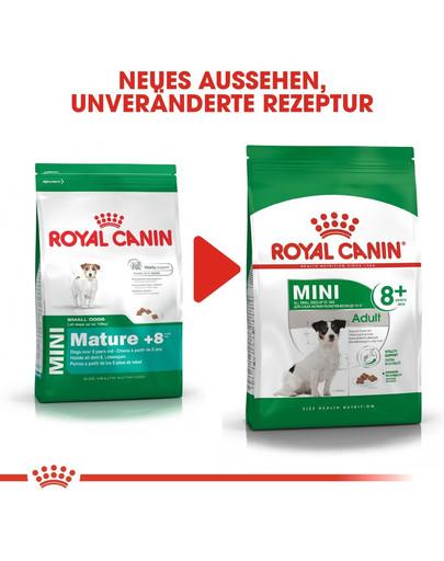 ROYAL CANIN MINI Adult 8+ Trockenfutter für ältere kleine Hunde 8 kg