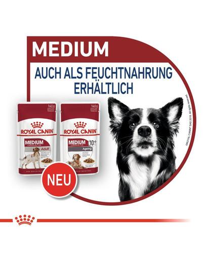 ROYAL CANIN MEDIUM Ageing 10+ Trockenfutter für ältere mittelgroße Hunde 15 kg