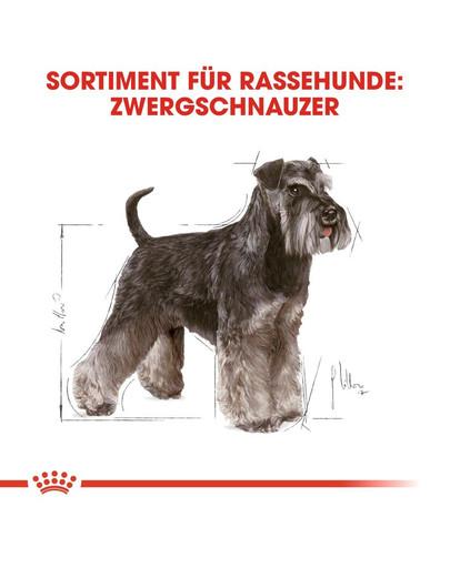ROYAL CANIN Miniature Schnauzer Adult Hundefutter trocken für Zwergschnauzer 3 kg