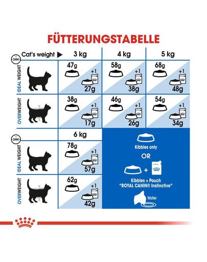 ROYAL CANIN INDOOR Appetite Control Trockenfutter für übergewichtige Wohnungskatzen 2 kg