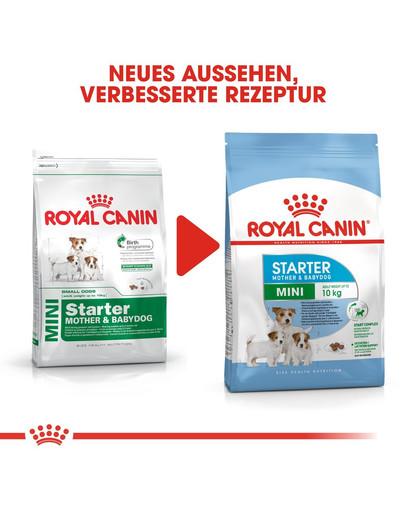 ROYAL CANIN MINI Starter für tragende Hündin und Welpen 1 kg