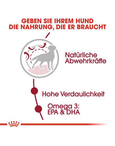 ROYAL CANIN MEDIUM Adult Trockenfutter für mittelgroße Hunde 15 kg