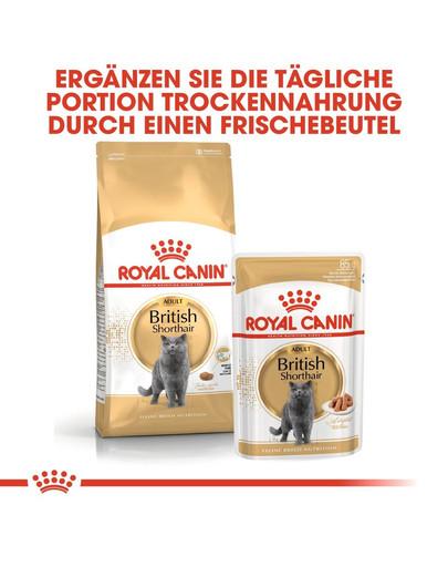ROYAL CANIN British Shorthair Katzenfutter trocken für Britisch Kurzhaar 400 g