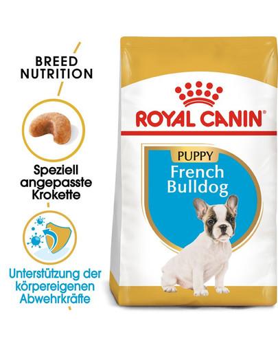 ROYAL CANIN French Bulldog Puppy Welpenfutter trocken für Französische Bulldoggen 1 kg 4389