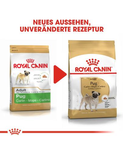 ROYAL CANIN Pug Adult Hundefutter trocken für Mops 1,5 kg