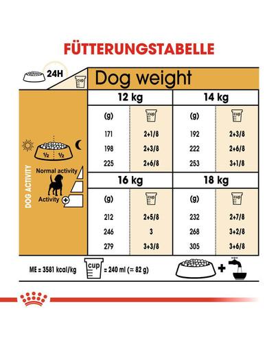 ROYAL CANIN Beagle Adult Hundefutter trocken 12 kg
