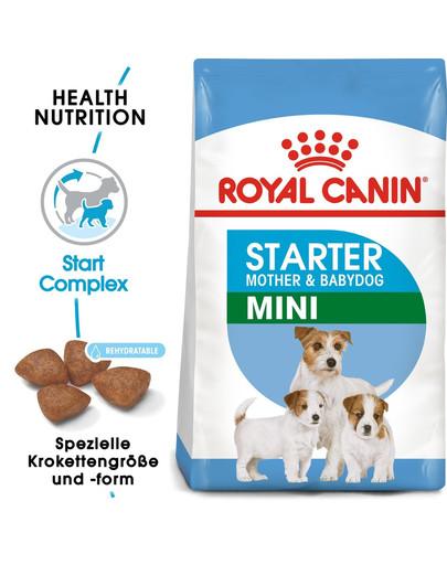 ROYAL CANIN MINI Starter für tragende Hündin und Welpen 3 kg